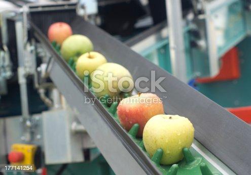 istock Apple conveyor belt 177141254