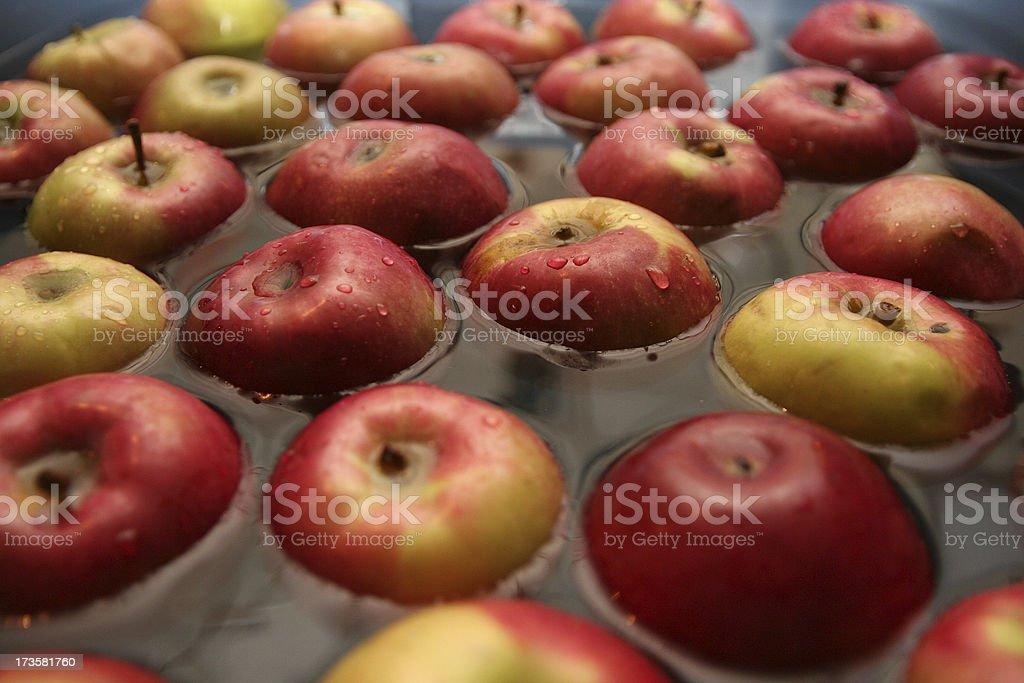 apple dunking tub royalty-free stock photo