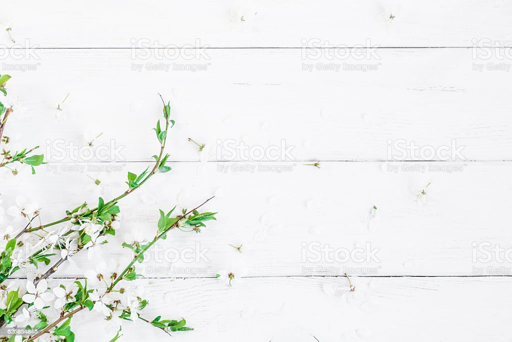 Apple flowers on white wooden background. Flat lay, top view stock photo