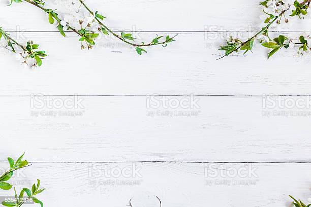 Free white flower background images pictures and royalty free apple flowers on white wooden background mightylinksfo