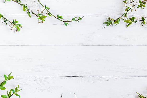 apple-blumen auf weißer hölzerner hintergrund - holzblumen stock-fotos und bilder