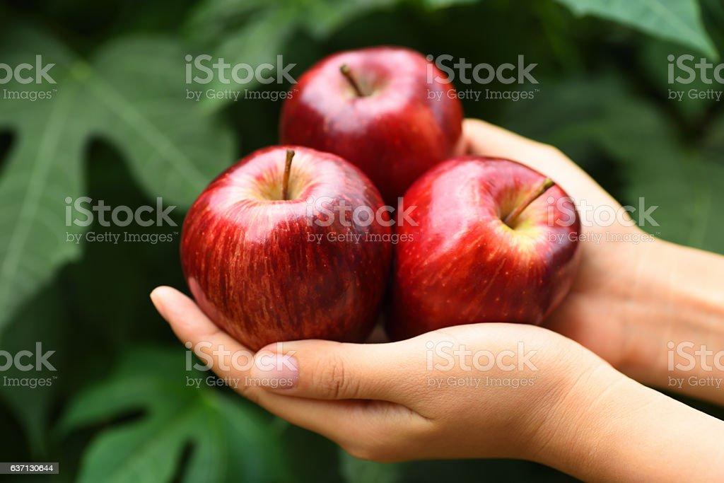 Apple-Obst  – Foto