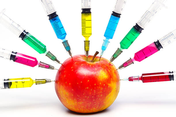 apple gmo - genetic modification stock photos and pictures
