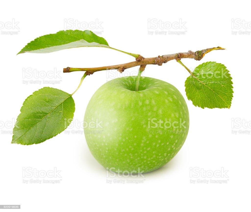 Apple Isoliert – Foto