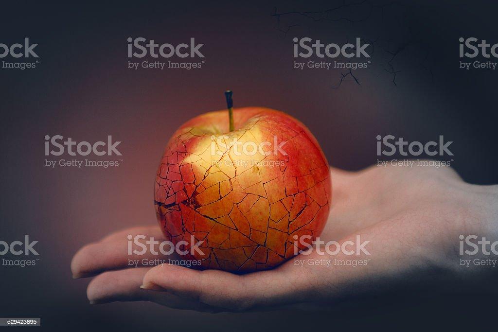 Apple of discord. stock photo