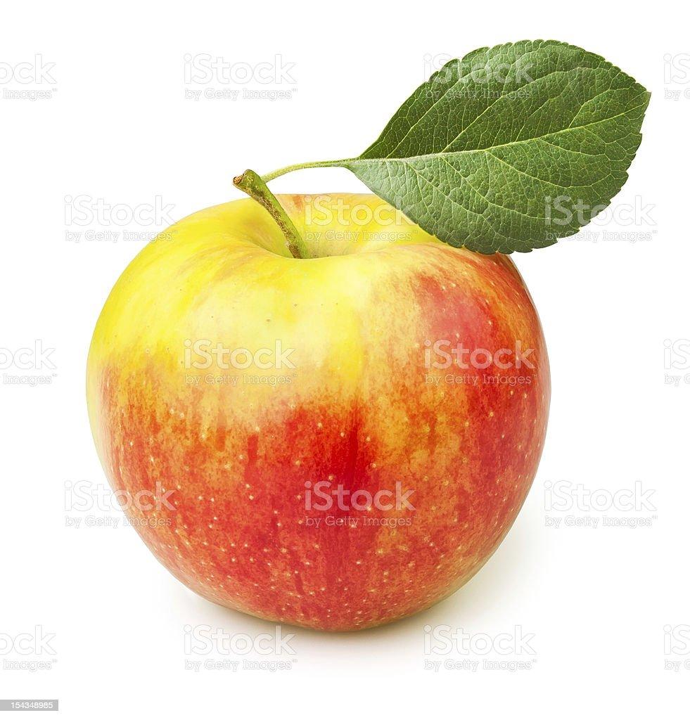 apple one stock photo