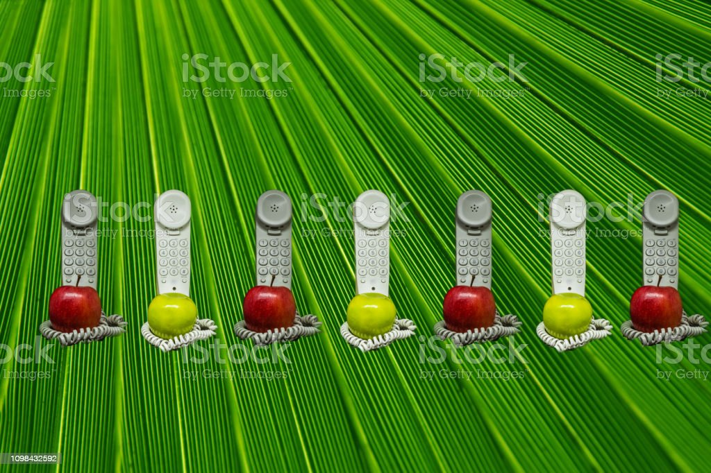 Apple phones in the green stock photo