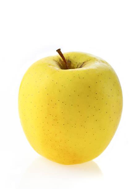 apple - golden photos et images de collection