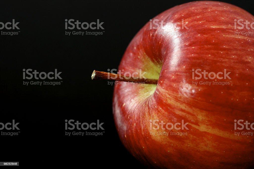 사과나무 royalty-free 스톡 사진