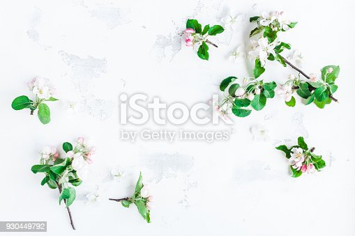 istock Apple tree flowers on white background. Flat lay, top view 930449792