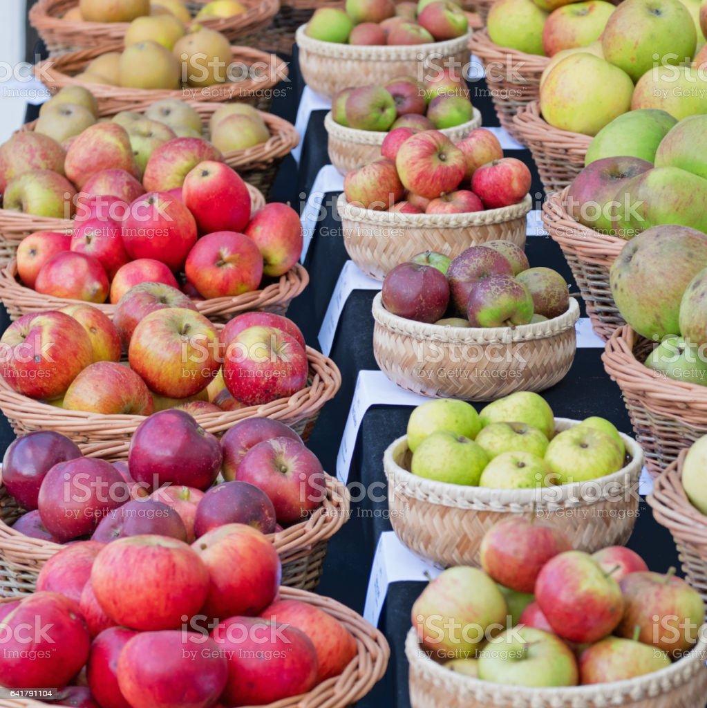 Apple varieties on display in autumn UK stock photo
