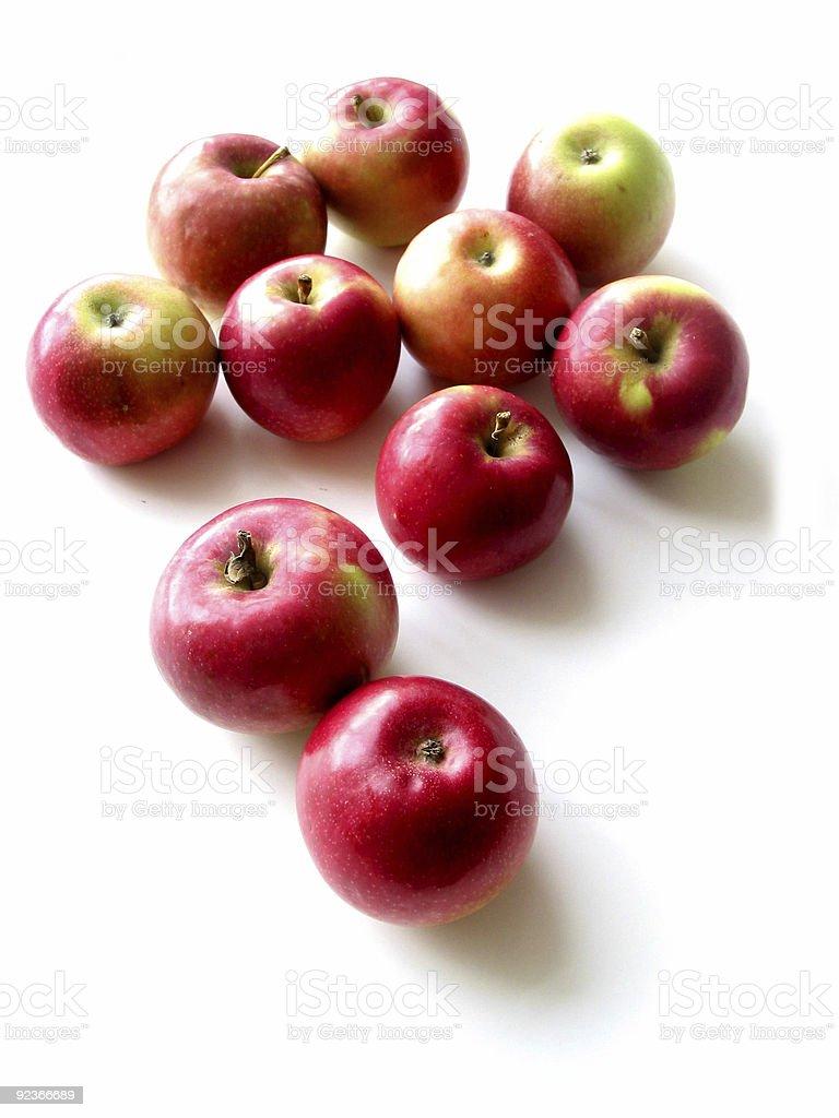 Apples 1 stock photo