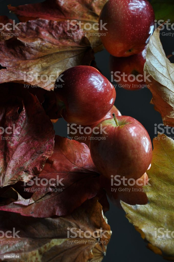 Apples Amidst Colorful Maple Leaves stock photo