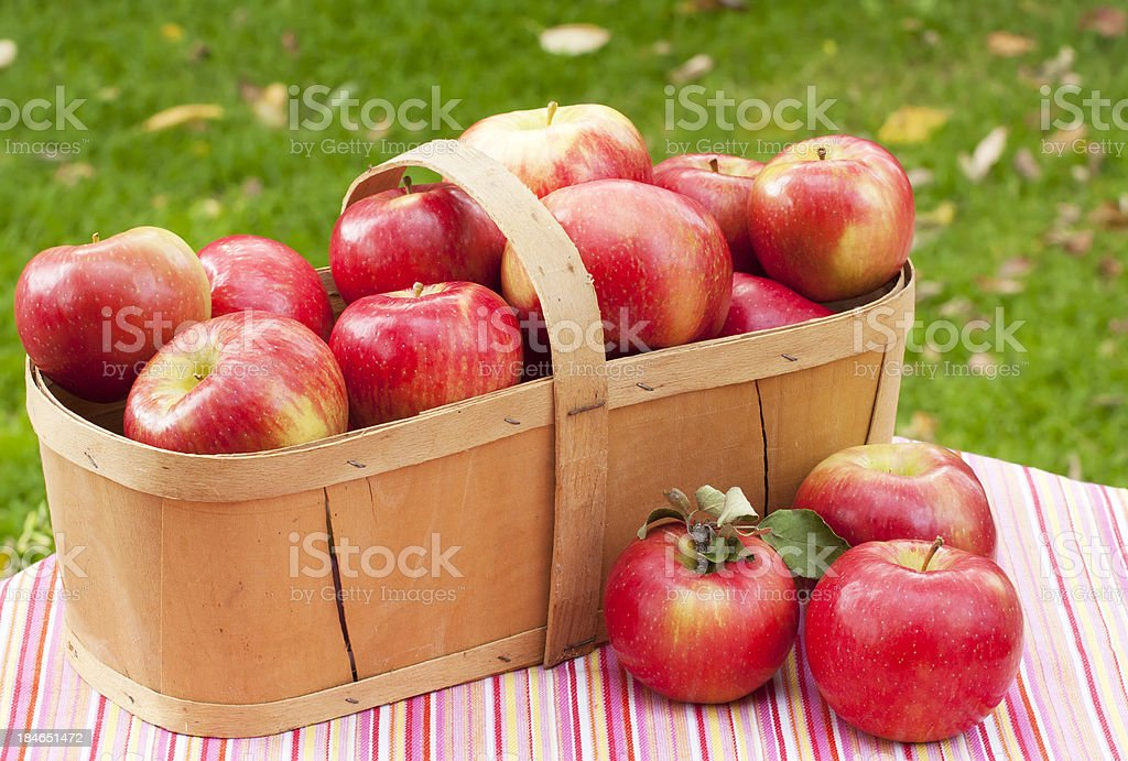Apples and Basket on Tablecloth stock photo