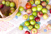 Apples and Basket on Vintage American Quilt