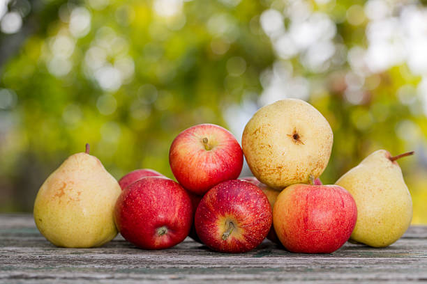 apples and pears stock photo