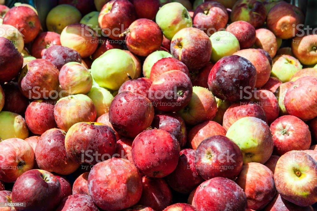 Apples at Farmer's Market stock photo