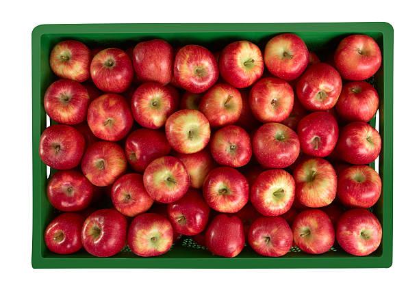 Apples At Market stock photo