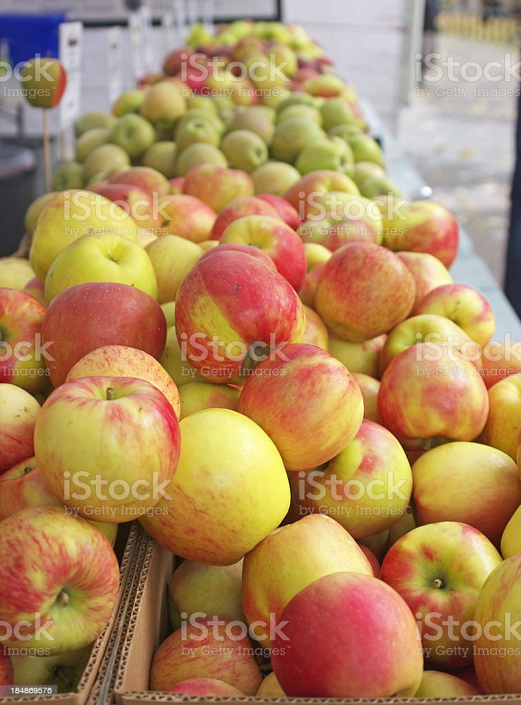 Apples from the pacific northwest stock photo