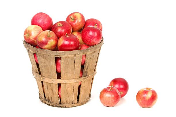 maçãs em uma cesta de fazenda em branco - cesto - fotografias e filmes do acervo