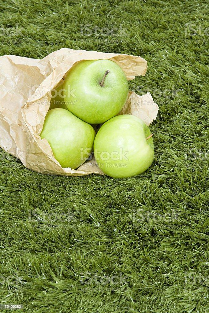 Apples in a paper bag foto de stock royalty-free