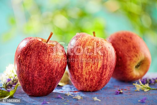 878725126 istock photo Apples in the orchard 671663934