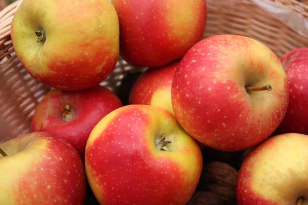 äpfel in gelben und roten farben - apfelweinkuchen stock-fotos und bilder