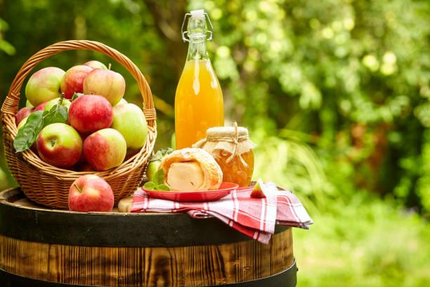 배럴에 서 있는 배경 과수원에 사과. 사과 주스와 사과 보존. 스톡 사진