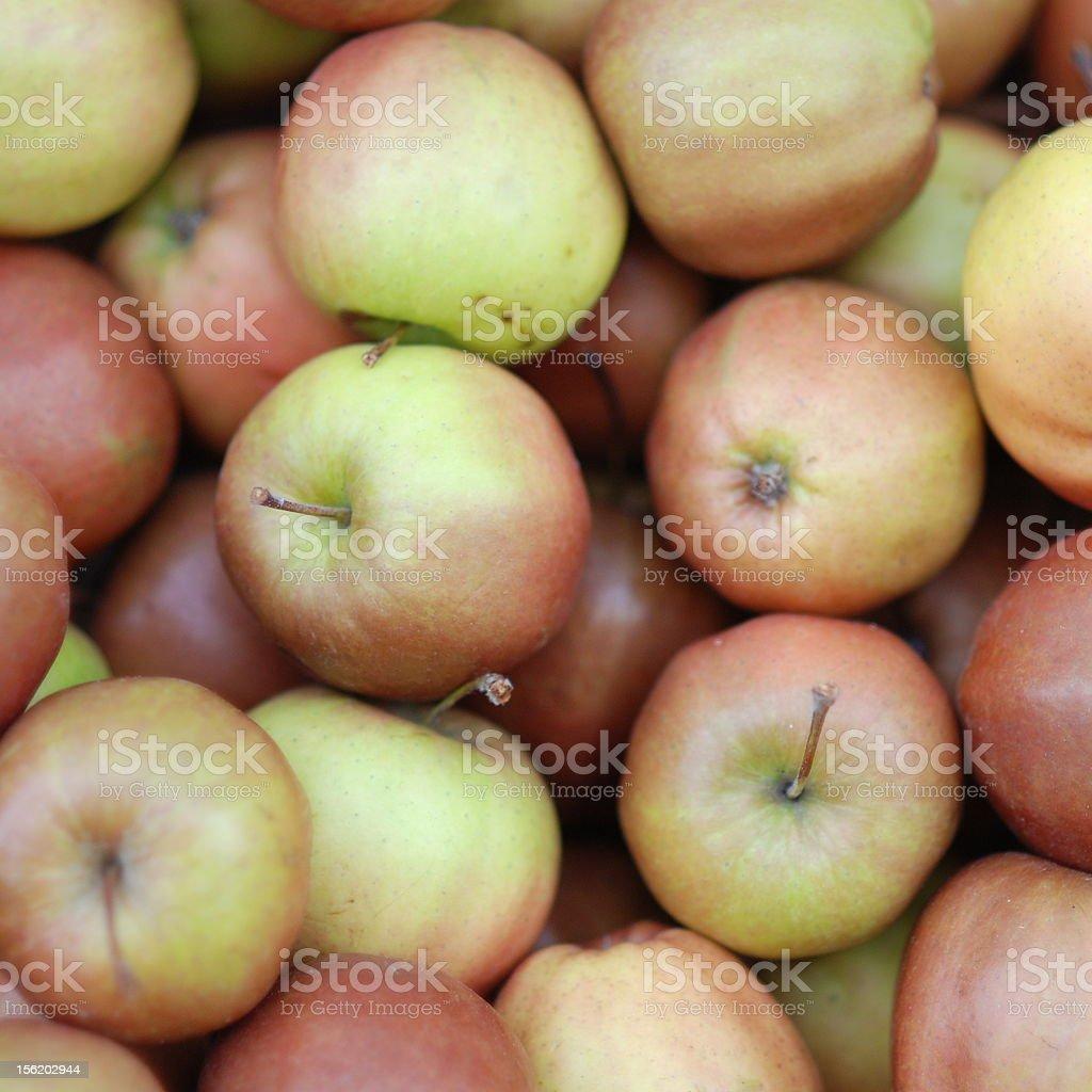 apples lots of them! Apple - Fruit Stock Photo