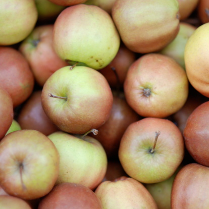 Apples Stock Photo - Download Image Now