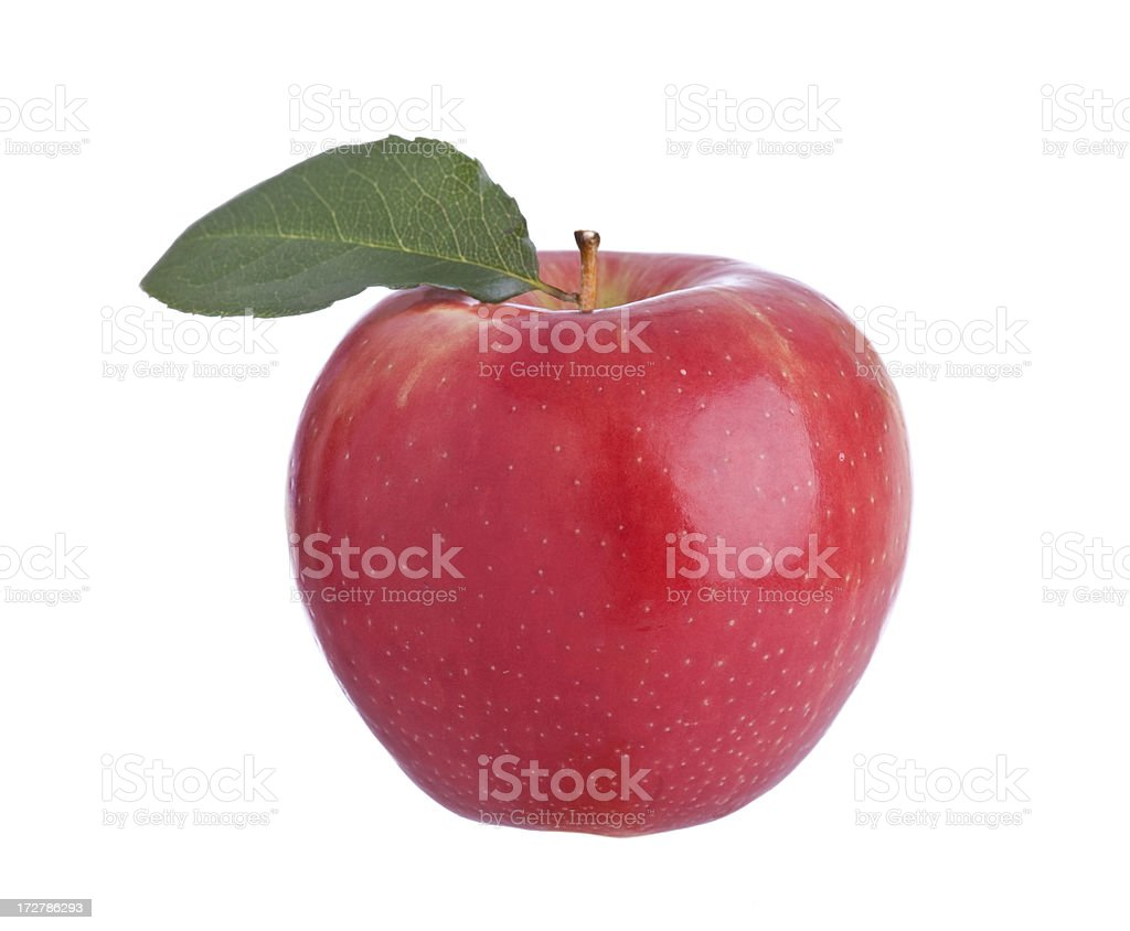 Apples (XL) royalty-free stock photo