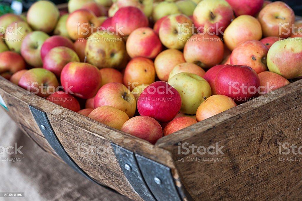Äpfel – Foto