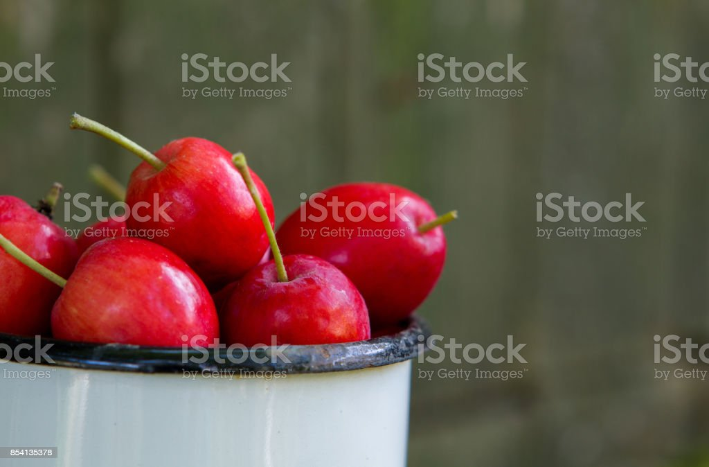 Apples ranetki stock photo