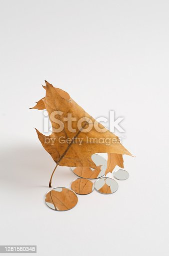 Reflection in the small round mirrors of an autumn brown oak leaf. Empty white background with copy space to demonstrate packaging, goods, products. Vertical Mockup