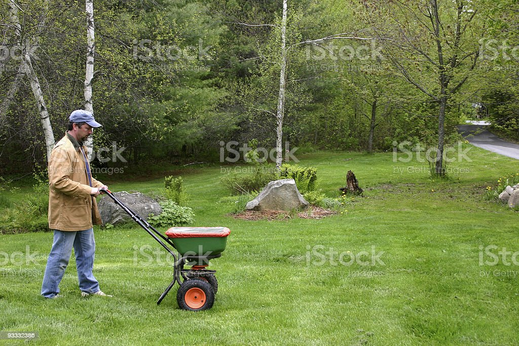 applying fertilizer stock photo