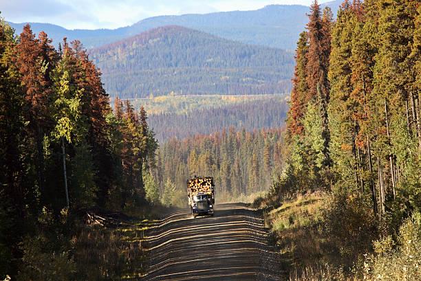 Approaching logging truck in beautiful British Columbia stock photo