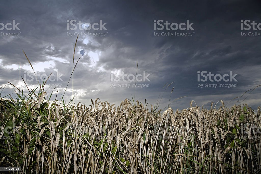 approaching storm clouds royalty-free stock photo