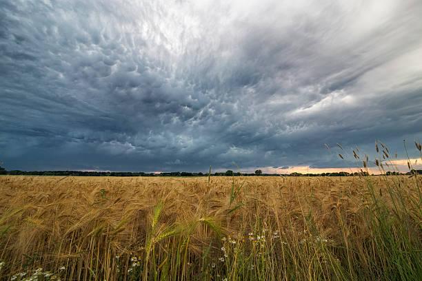 Nähern storm – Foto