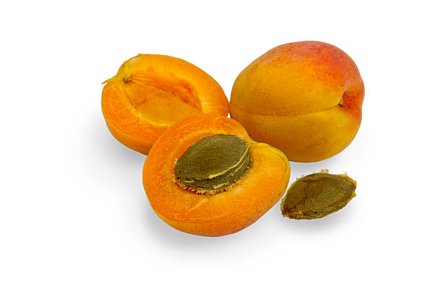 Apricot and a half. stock photo