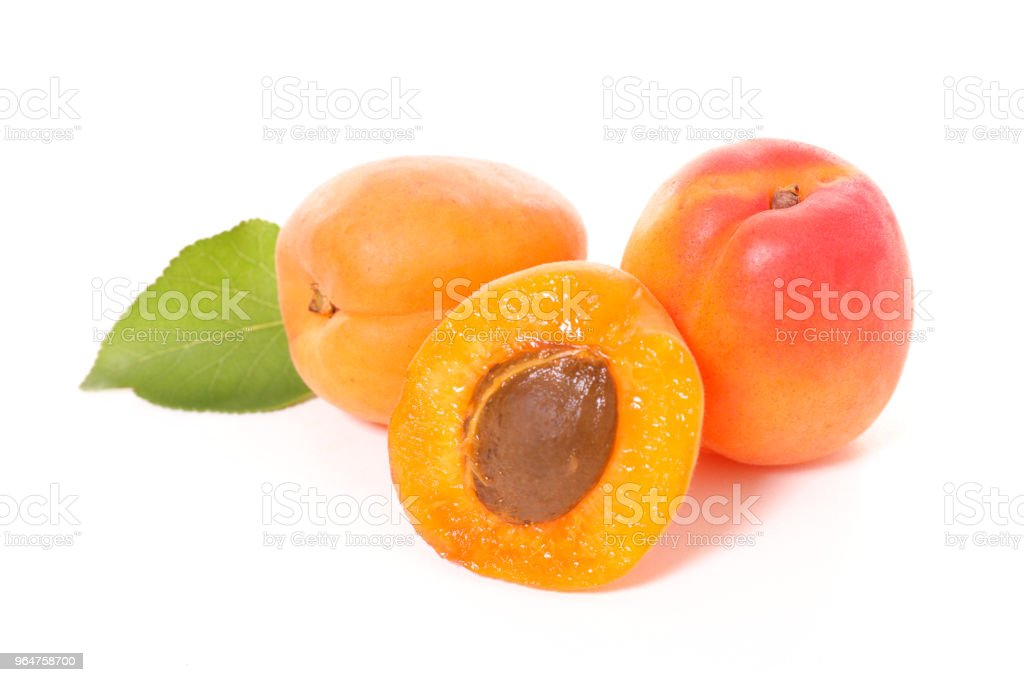 apricot and leaf royalty-free stock photo
