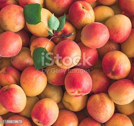 Apricot bacground