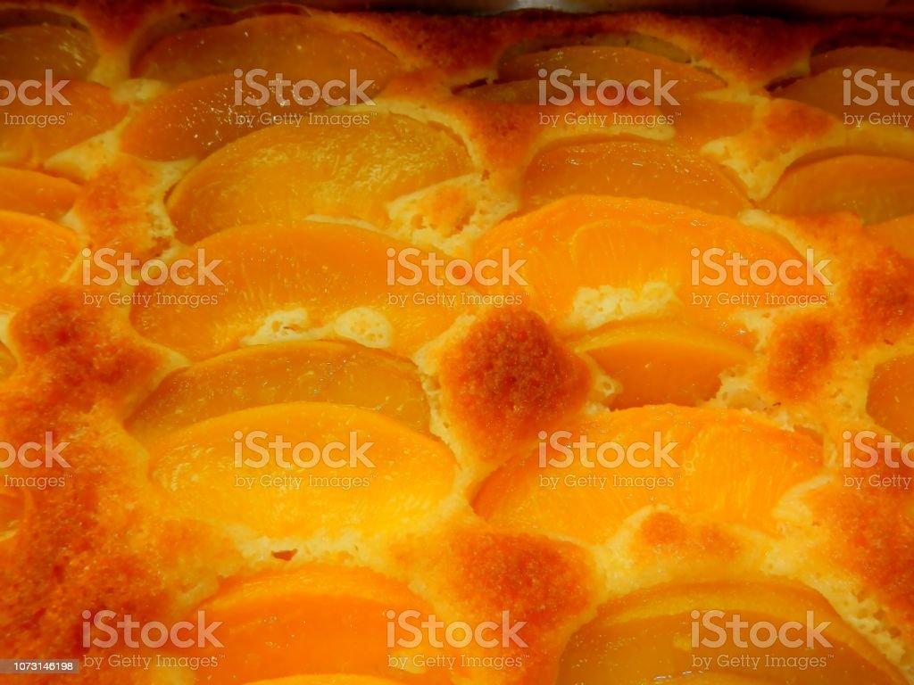 Apricot Kuchen, frisch aus dem Ofen, Detail – Foto