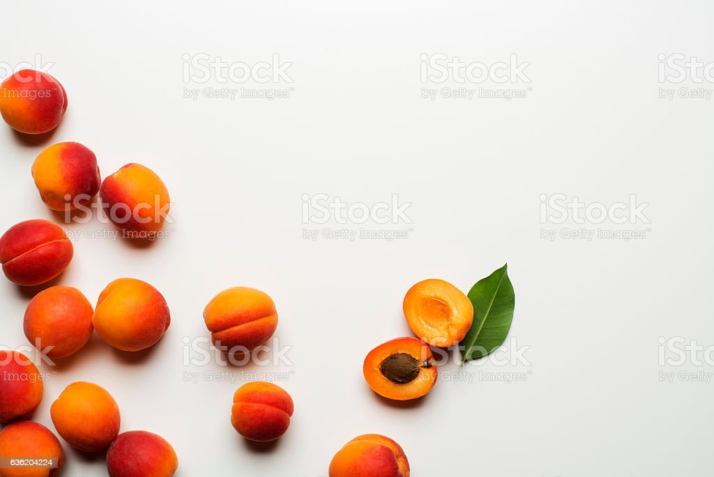 Apricot fruit stock photo