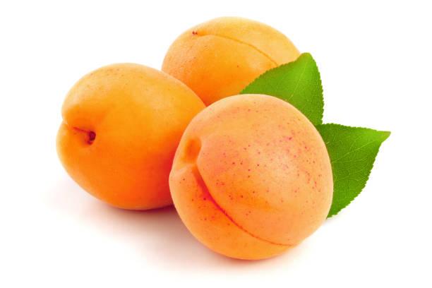 aprikose früchte mit blättern isoliert auf weißem hintergrund makro - aprikose stock-fotos und bilder