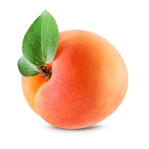 aprikose isoliert. aprikose mit blättern auf weiß. mit beschneidungspfad. - aprikose stock-fotos und bilder