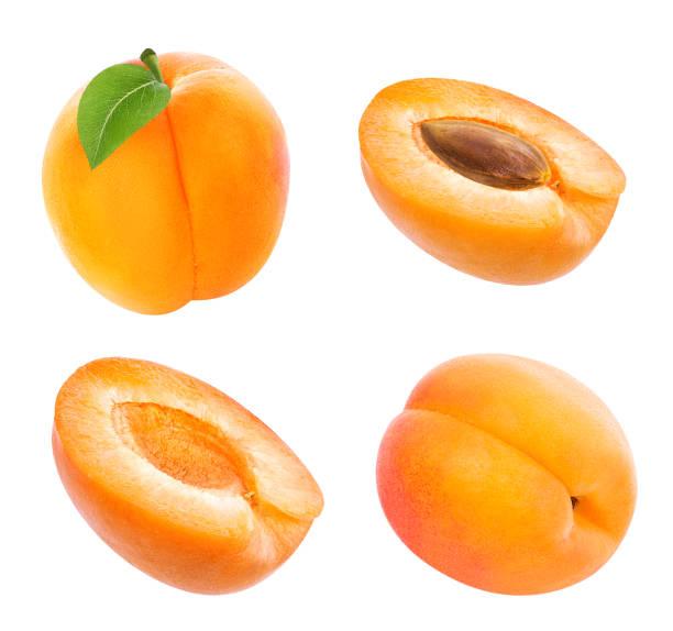 apricot isoliert auf weißem - aprikose stock-fotos und bilder
