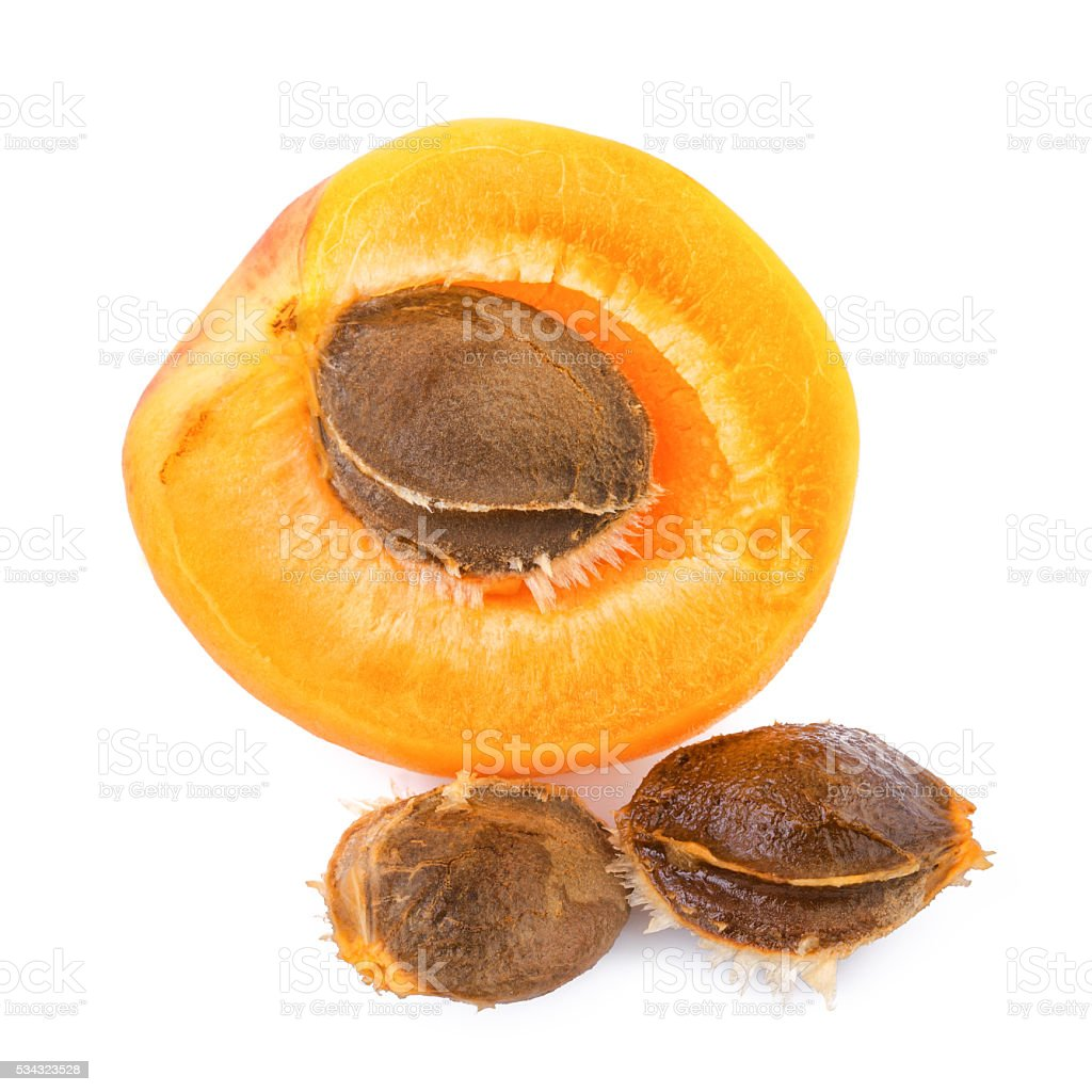 Apricot kernels with fruit isolated on white background. Closeup. stock photo