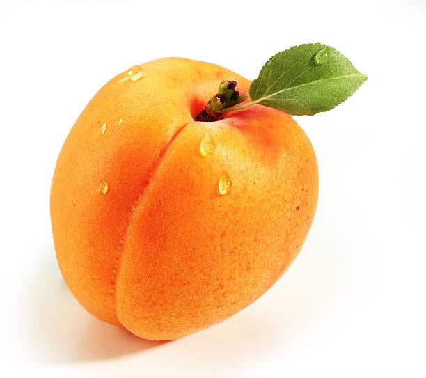 aprikose - aprikose stock-fotos und bilder