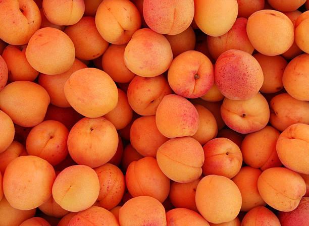 aprikose - leitner stock-fotos und bilder
