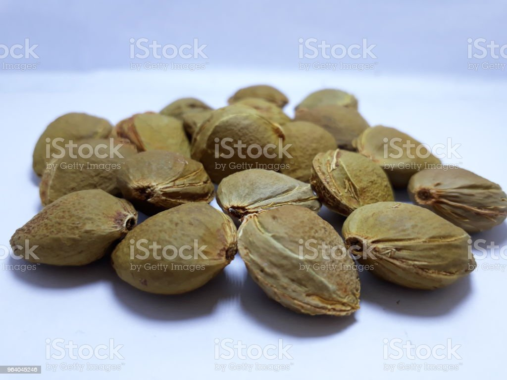 apricot seeds - Royalty-free Almond Stock Photo